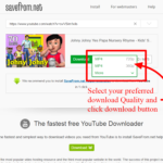 Amazing Paste Youtube Video Url En Save From Net