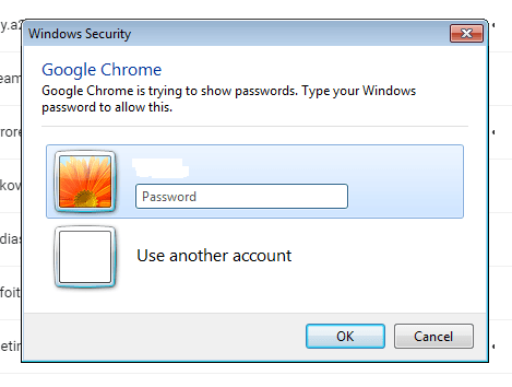 windows dialog box for system password verification