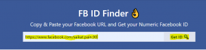 Copy paste ID in the Facebook ID finder