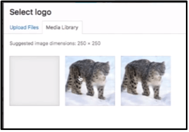 upload or choose the logo picture in media library