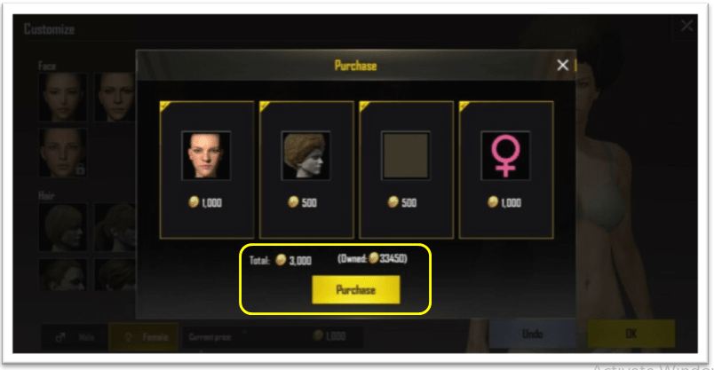 PUBG purchase coins