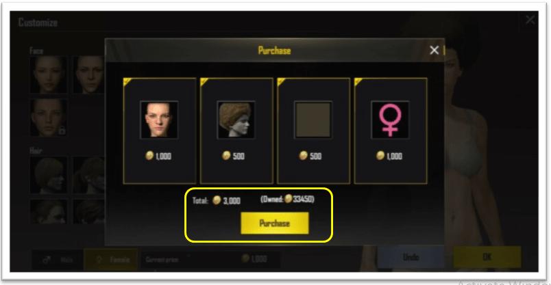 PUBG purchase coins