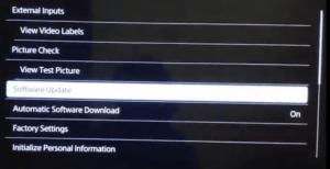 software update option