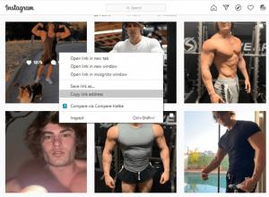 Instagram copy the profile image link