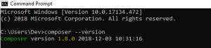 check the composer version compatibility for your windows system in command prompt