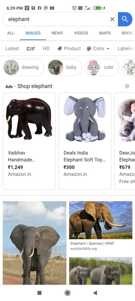 search image named elephant