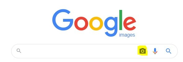 hit the camera icon in google image search site