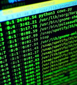 Choosing the programming languages