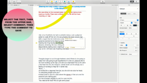 Tap on comments to add comments on highlighted text in pages on mac