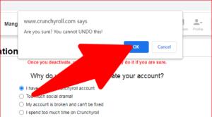 Crunchyroll Account Delete Confirmation Screen