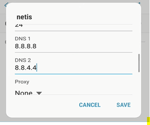 DNS Configuration Screen