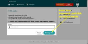 Provide eHarmony account password and proceed delete profile buttom screen